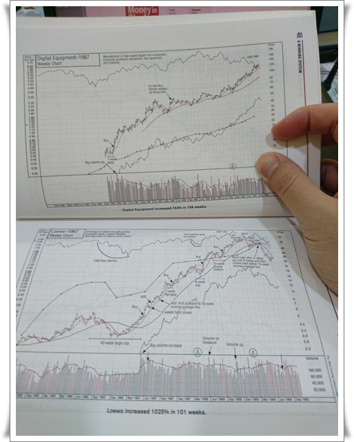 100 Charts Of The Greatest Stock Winners From 1880 Through 2008
